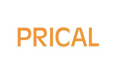 Prical srl